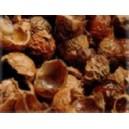 Mydlové orechy
